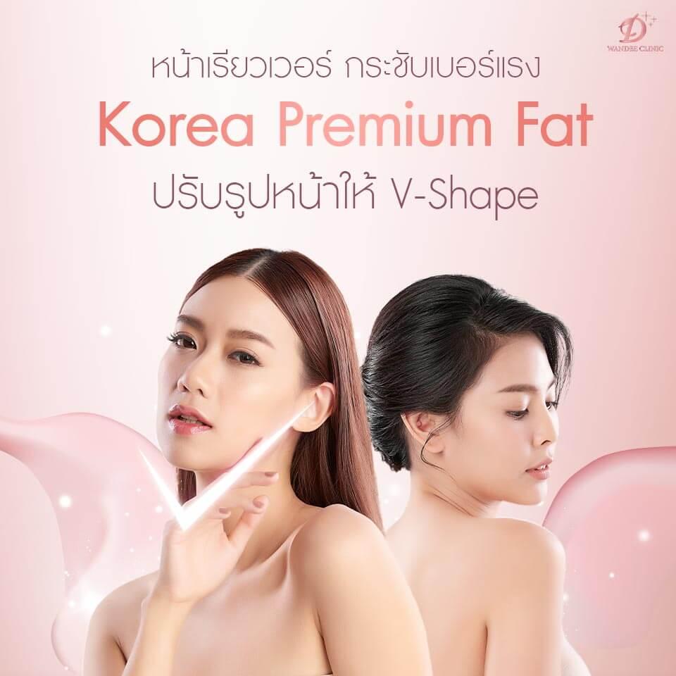 korea premium